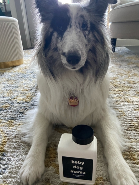 Baby Dog Mama Dog Shampoo for Dogs of All Sizes