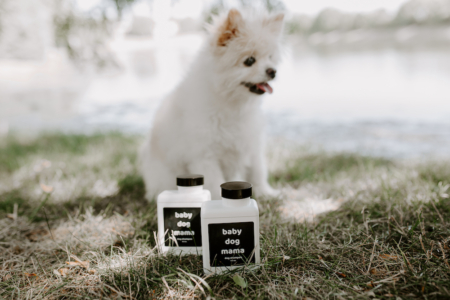 Dog in front of Baby Dog Mama Dog Shampoo